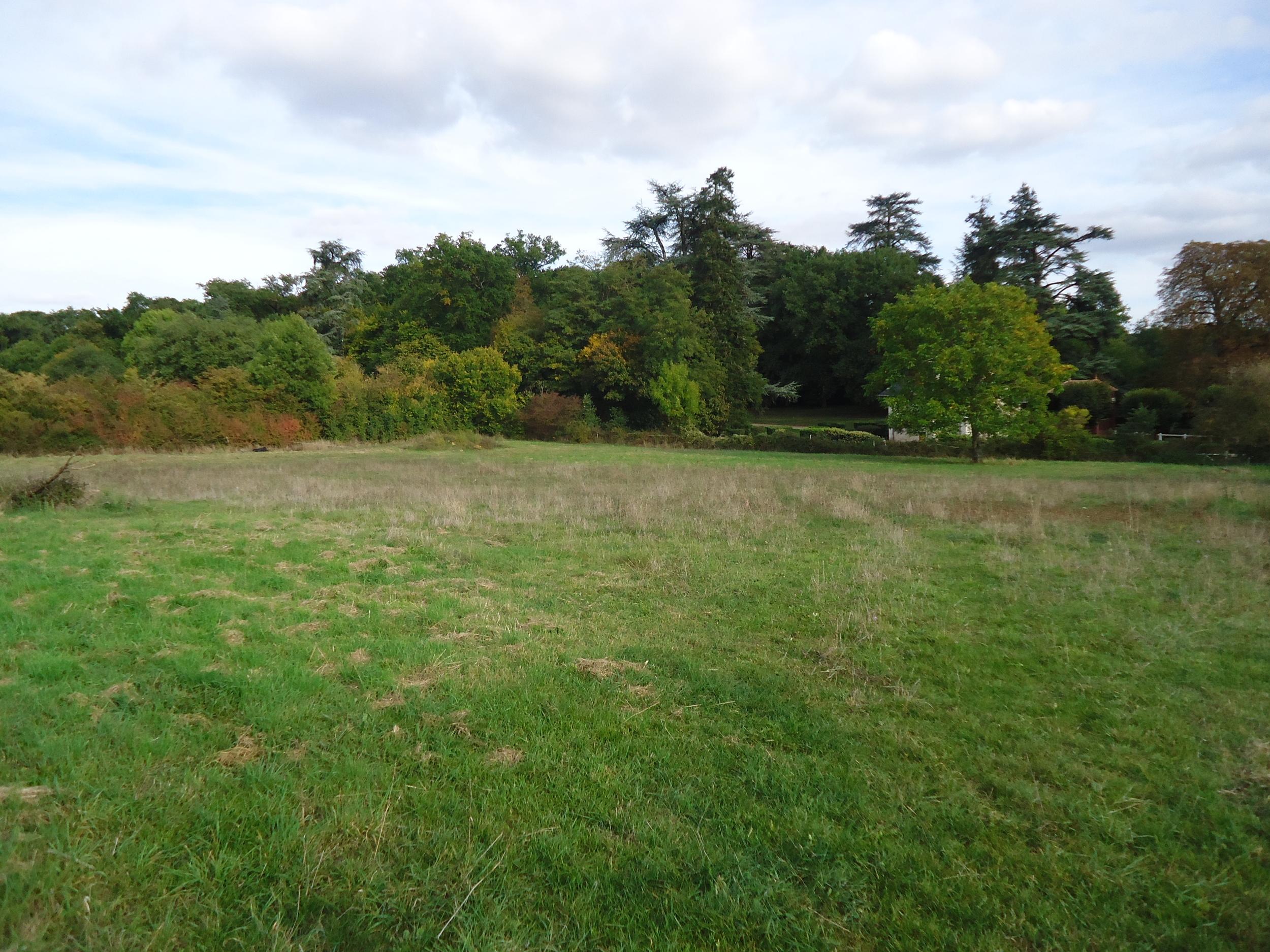 vente terrain Aubigny Aubigny 79390
