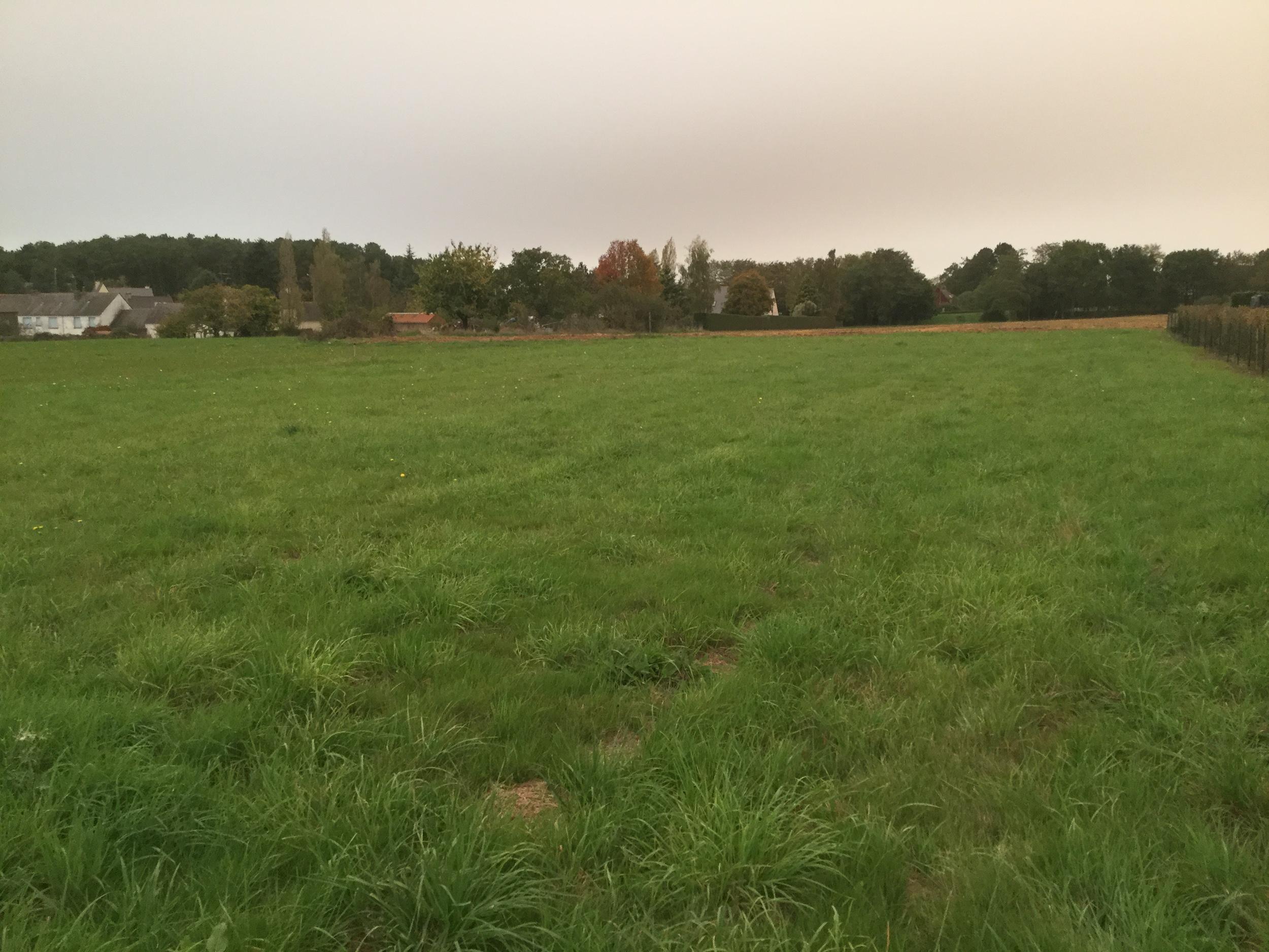vente terrain Sainte-Marie Sainte-Marie 35600