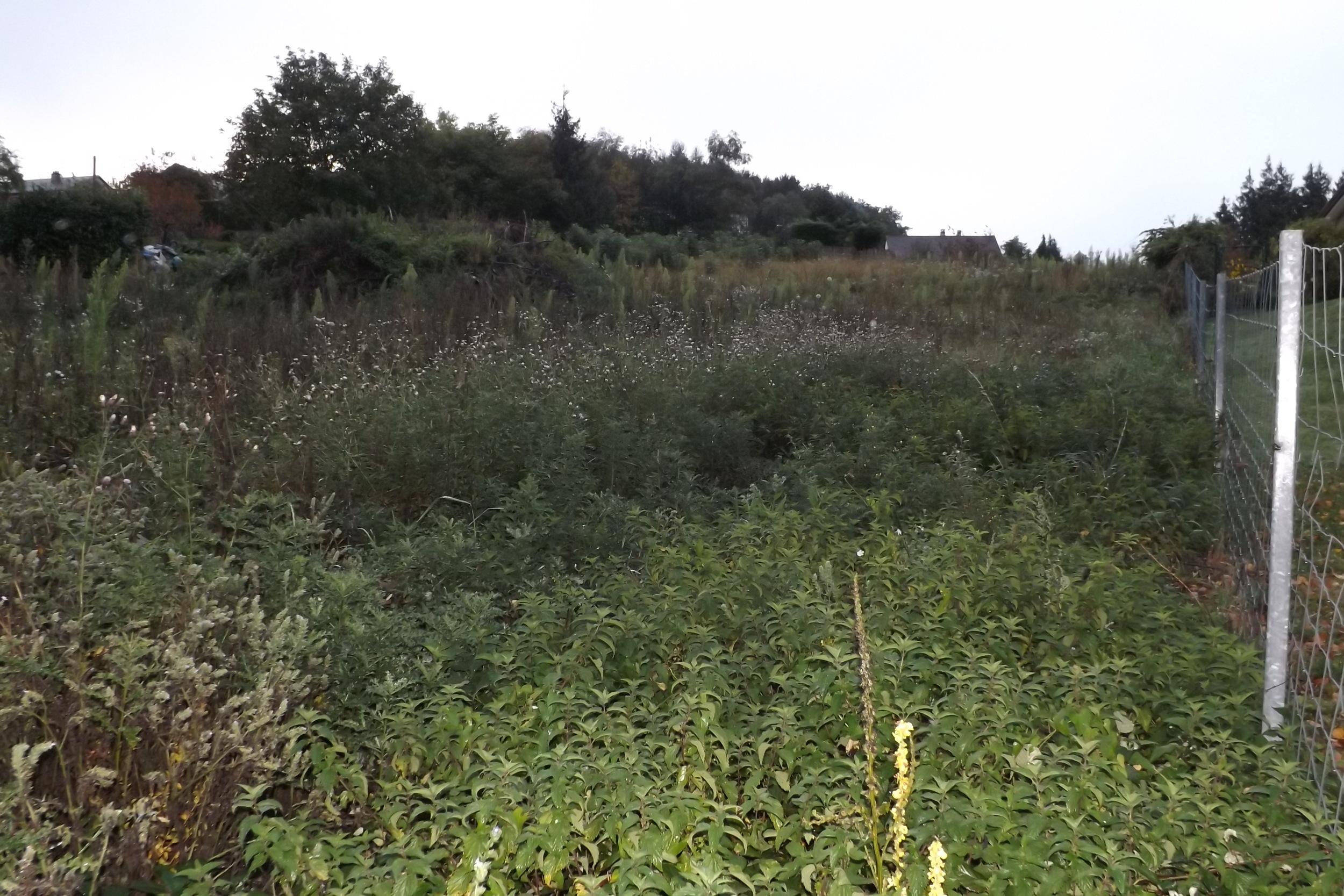 vente terrain Guéret Guéret 23000