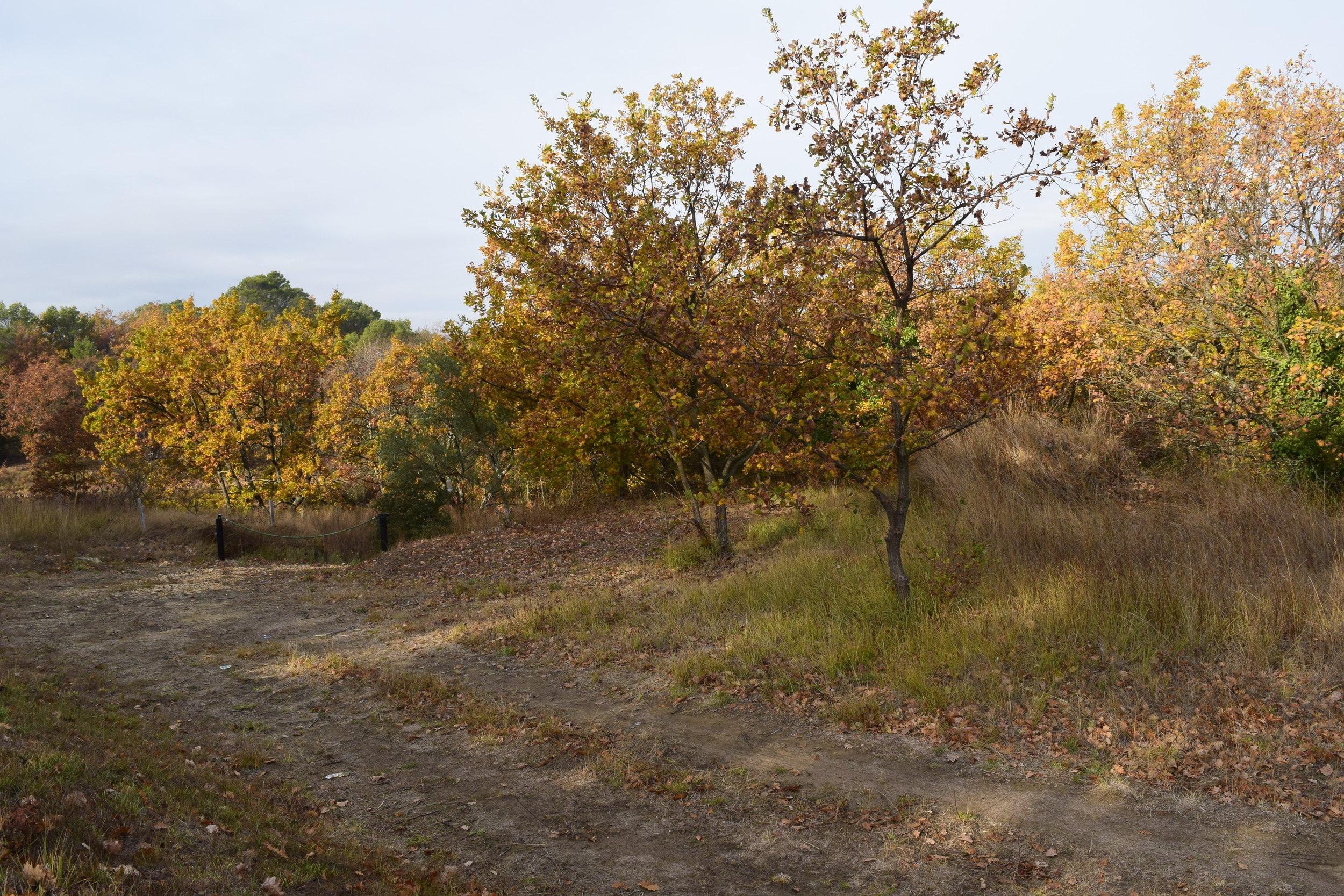 vente terrain Uzès Uzès 30700