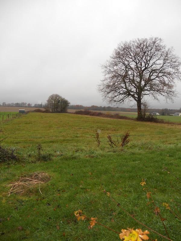 vente terrain La Chapelle d Angillon La Chapelle d Angillon 18380
