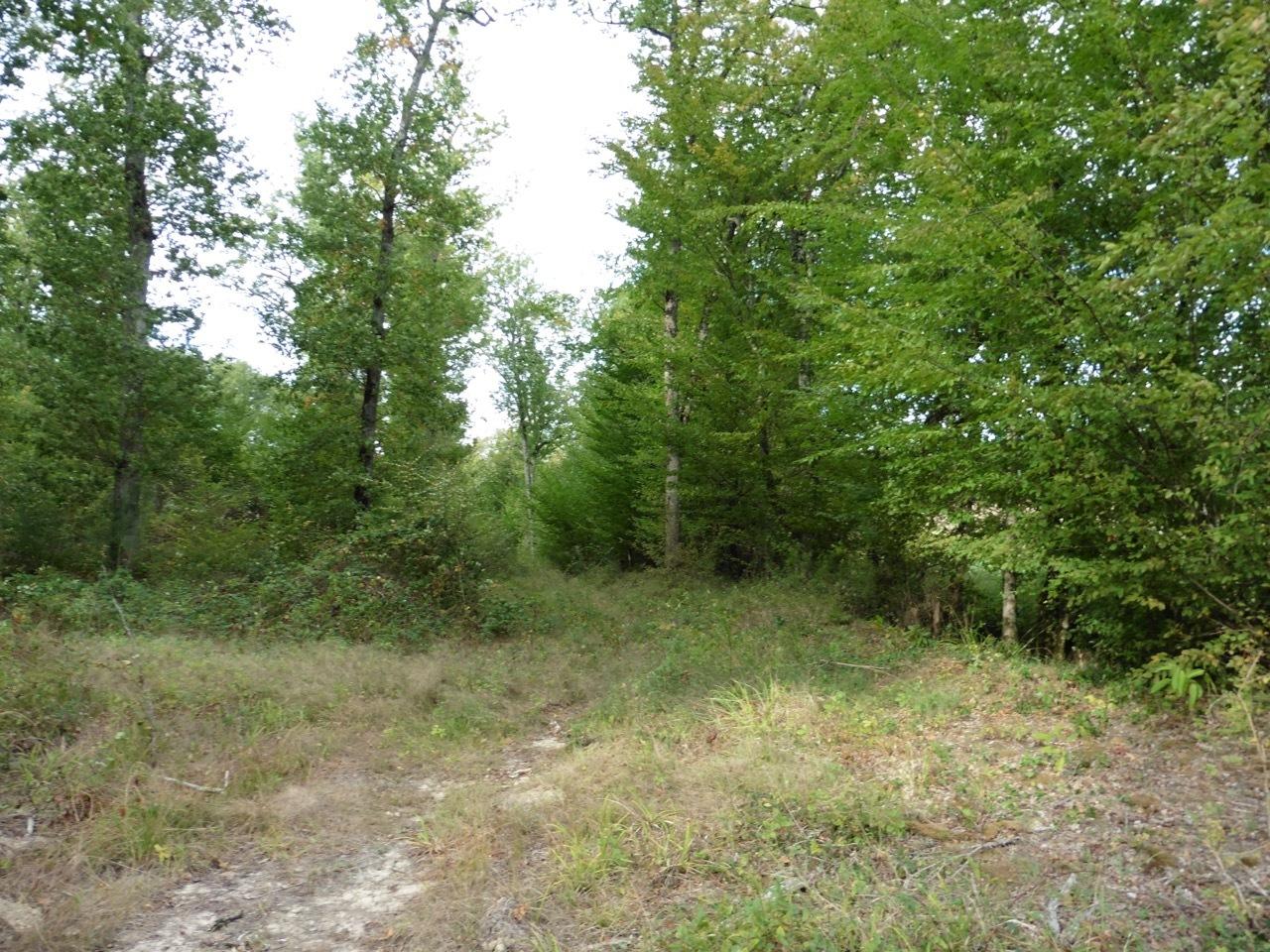 vente terrain Monbahus Monbahus 47290
