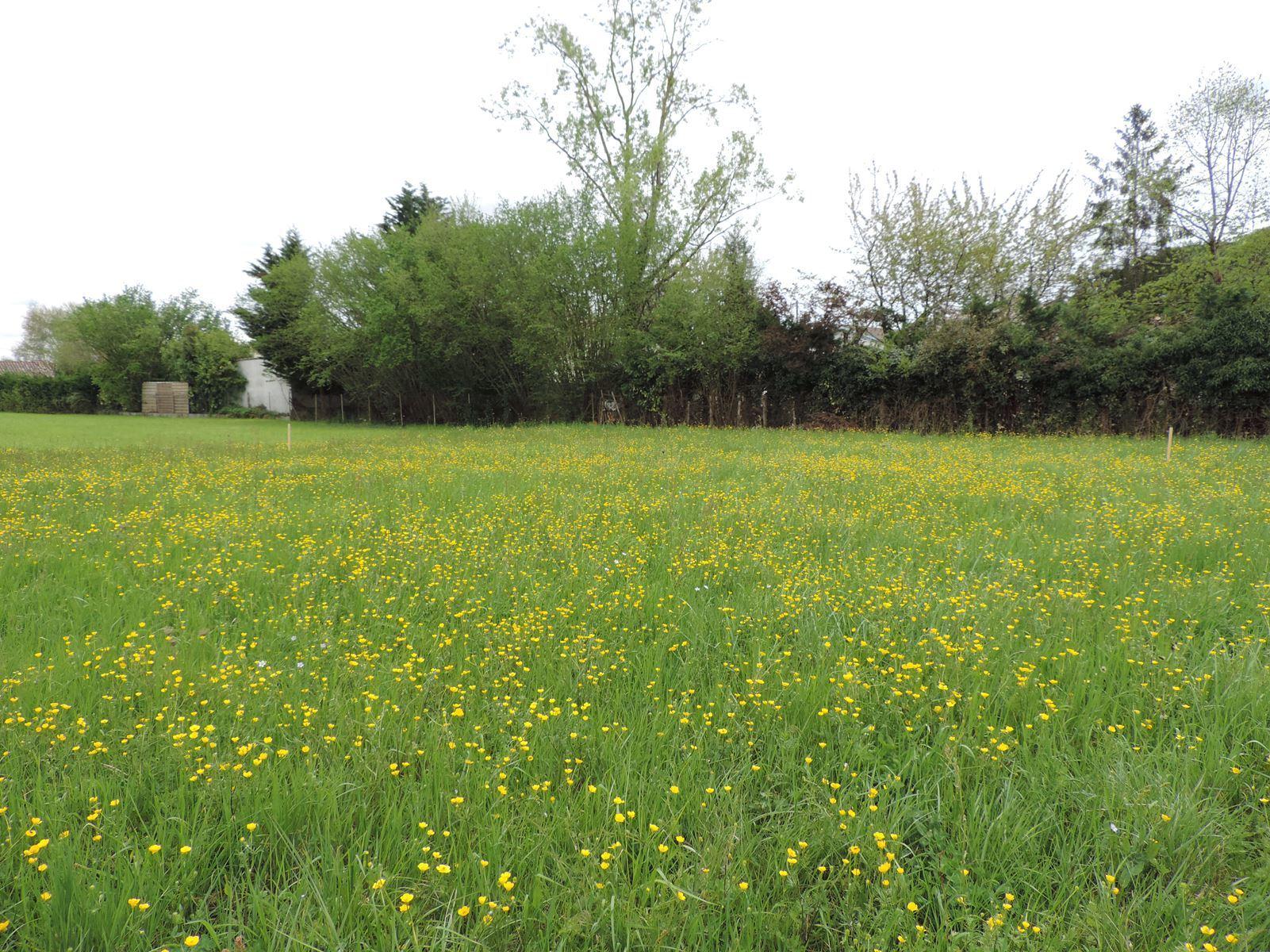 vente terrain Villeneuve-sur-Lot Villeneuve-sur-Lot 47300