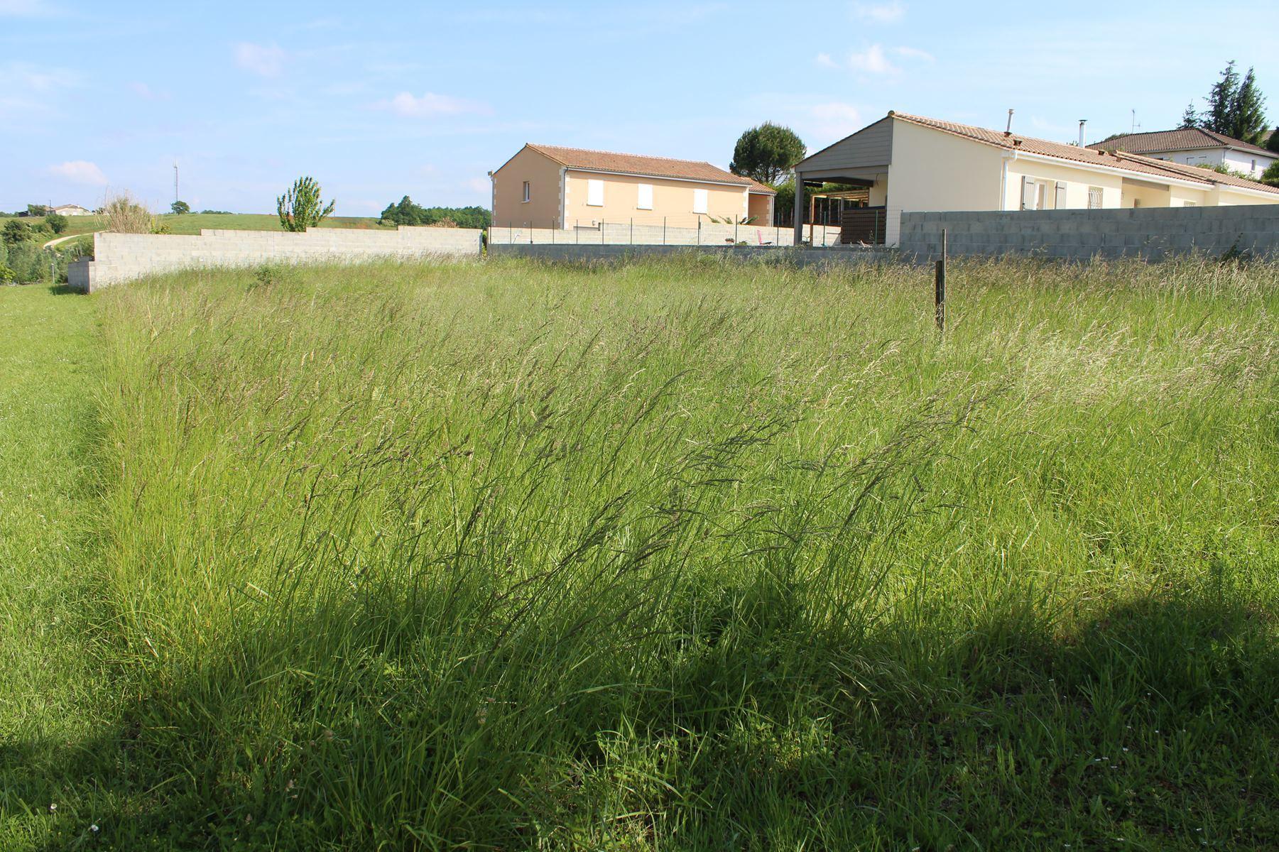 vente terrain Chateauneuf sur Charente Chateauneuf sur Charente 16120