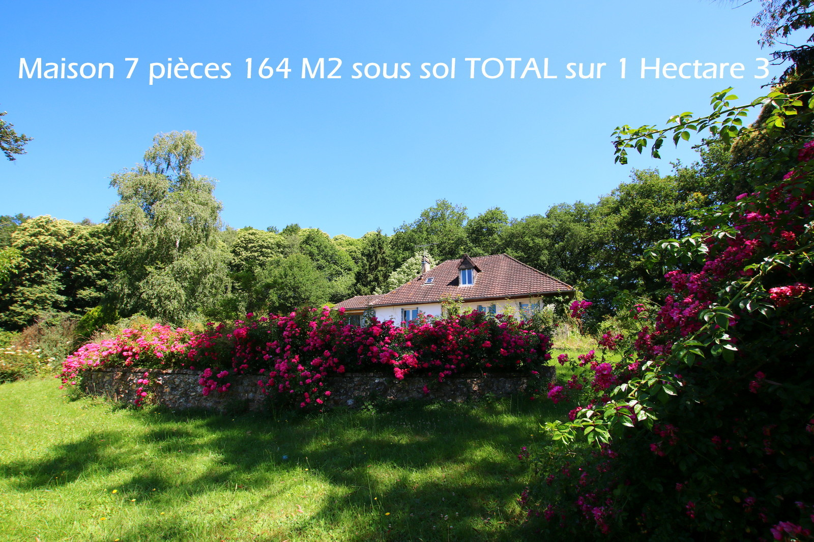 vente maison/villa 5 pièces La Loupe 28240
