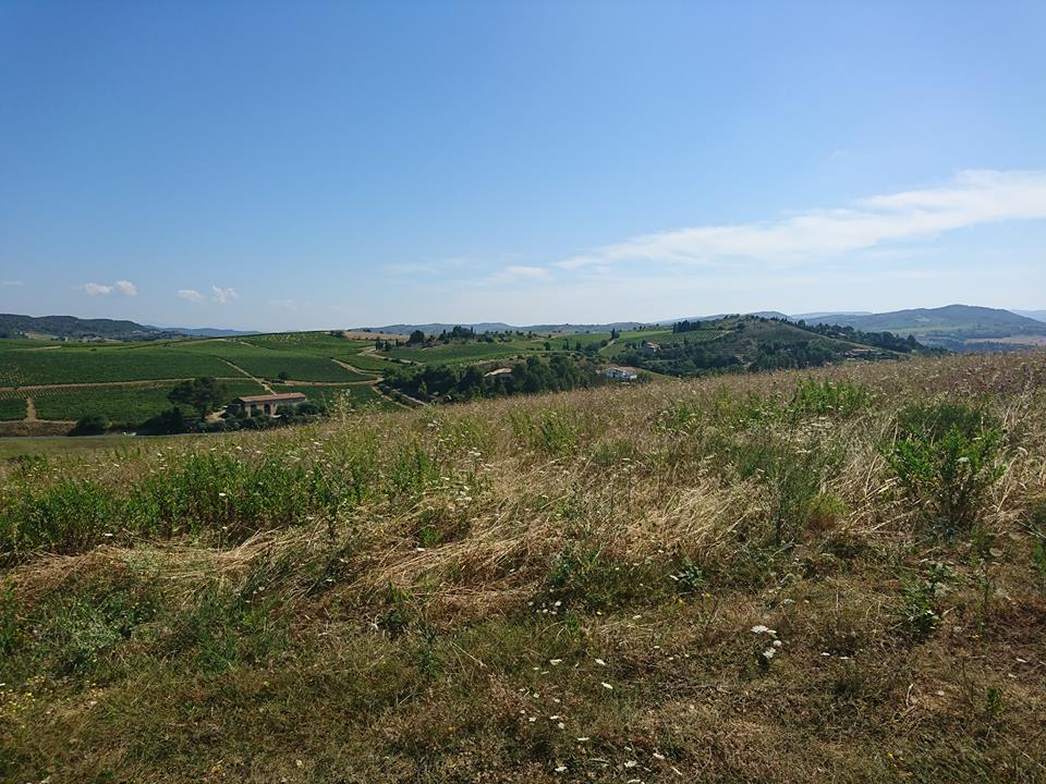vente terrain Limoux Limoux 11300