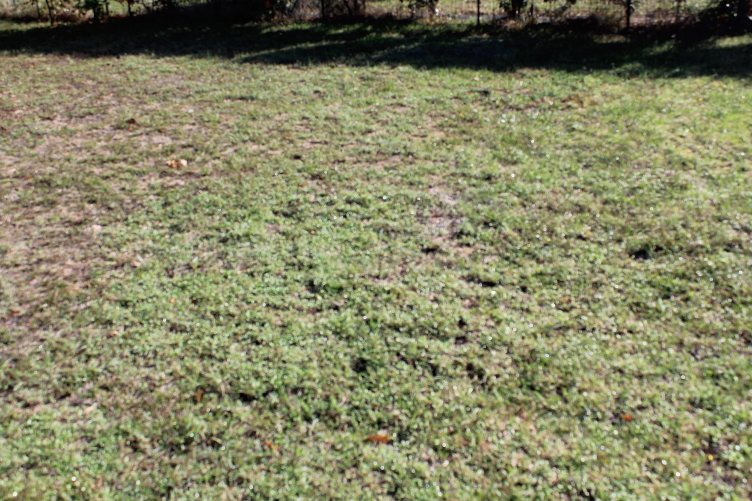 vente terrain Soyaux Soyaux 16800